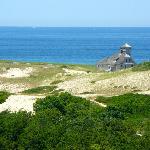 View from Provincelands Visitor Center observation deck