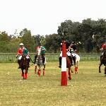 Clase de Polo junto a Polo Tour