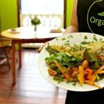 Vibrant delicious food in Organico Cafe Bantry