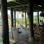 Hammocks near the dining area