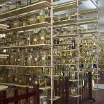 Huge specimen library