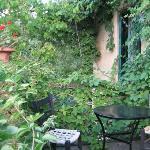 üppig das Grün im Gastgarten