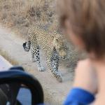 still stalking that impala