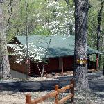 Secluded Wooded Setting!