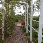 Victorian Garden trellis.