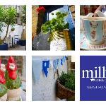 Milly's Deli