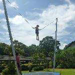 The girls taking on the high wire challenges