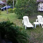 Vaikoi (back yard)