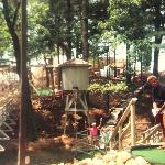 Mini-golf at Timber Falls