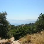 vista da bagni di Afrodite (by bus 3 euro il giornaliero)