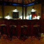 Panchi Villa Restaurant & Bar Foto