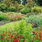 Milntown Garden