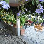 la terrasse où l'on prend le petit dejeuné