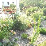 Some of the gardens at the Casselman Inn