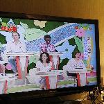 """42"""" Panasonic Viera TV again. Excellent."""