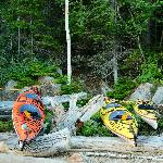 Kayaks secured from the Tides