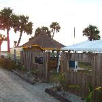 Tiki Bar on other side of fence.