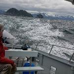 Around Kenai Fjords National Park and Seward