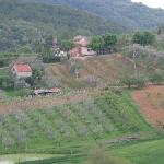 Nearby Villa and farm/vineyard