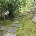 An inner garden