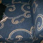 vile stain on the sofa