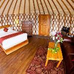 Pandora's Yurt