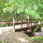 One of the little bridges on the Lake Chillisquaque trail