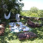 A family pic-nic in my garden