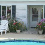 Pool & back garden