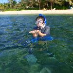 snorkeling near the restaurant