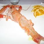 The freshest prawn ever!