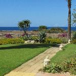 Il giardino delle Aloe 12