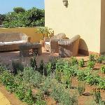 Il giardino delle Aloe 15