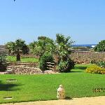 Il giardino delle Aloe 3