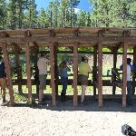 Rifle shooting - targets and tin cans