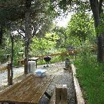 community BBQ area