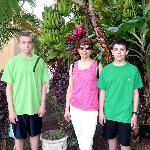 Banana Tree - Back of Hotel