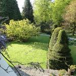 Interesting topiary