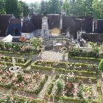 View of garden from the Library Suite