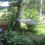 The hammock in the garden - view from the breakfast deck