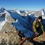 Kletterei am Zinalrothorn. VL: Matterhorn, Obergabelhorn, Dent Hérens und Dent Blanche.
