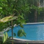 Chez Palmiers Pool