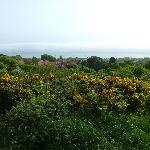 View from Caldy Hills.