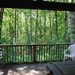 View off of the aframes covered back porch.