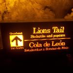 Lions Tail sign - best pic I took of the area - sadly.