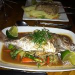 Pad Thai and Red Snapper (whole fish)