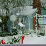 Photo of Mikes Beach Resort