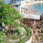 garden by the hotel-tide is out