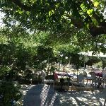 terrasse-jardin du restaurant