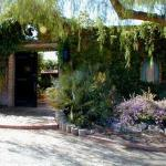 Hacienda del Desierto Bed and Breakfast Foto